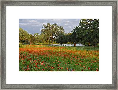 Sunset At The Pond Framed Print by Lynn Bauer