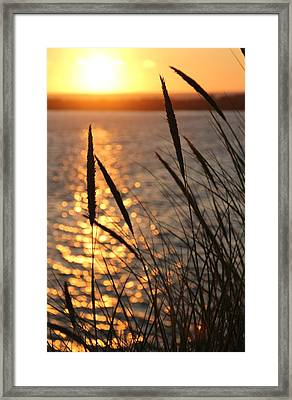 Sunset Beach Framed Print by Athena Mckinzie