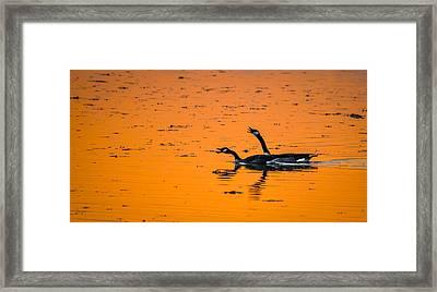 Sunset Autumn Leaves Framed Print by Brian Stevens