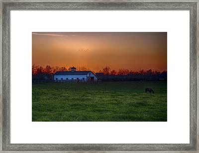 Walmac Farm Ky  Framed Print