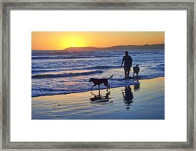 Sunset Beach Stroll - Man And Dogs Framed Print by Nikolyn McDonald