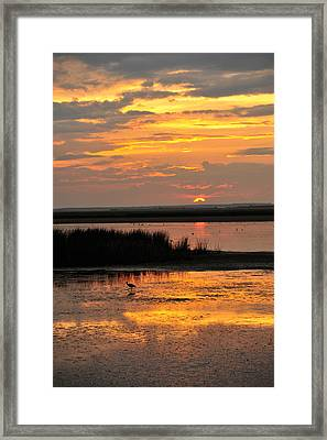 Sunset Beauty Framed Print by Birches Photography