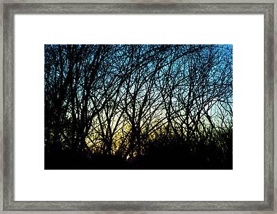 Sunset Behind Trees Framed Print