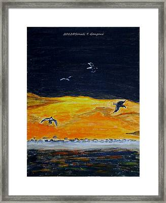 Sunset Birds Framed Print by Sonali Gangane