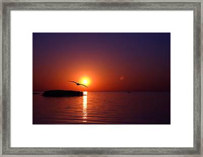 Sunset Blue Framed Print by Beverly Stapleton