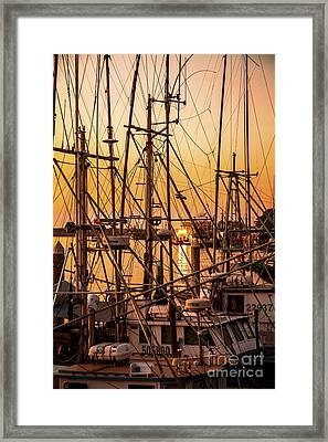 Sunset Boat Masts At Dock Morro Bay Marina Fine Art Photography Print Sale Framed Print