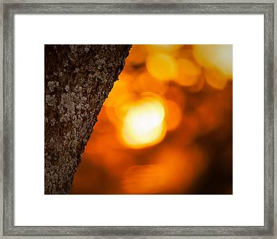 Sunset Bokeh Framed Print
