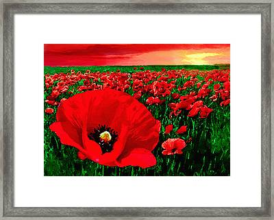 Sunset California Poppy Preserve Framed Print by Bob and Nadine Johnston