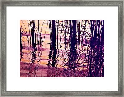 Sunset Cattails Framed Print