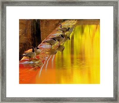 Sunset Club Framed Print by Chris Fraser