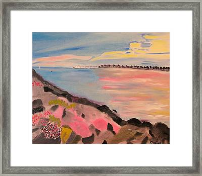 Sunset Contrasts Framed Print by Meryl Goudey