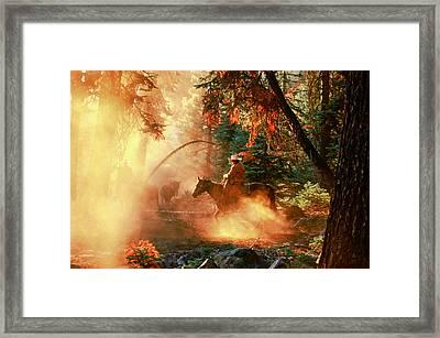 Sunset Cowboy Framed Print by Diane Bohna