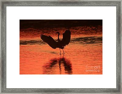Sunset Dancer Framed Print