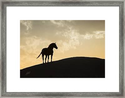 Sunset Dreams Framed Print