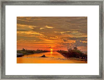 Sunset Everglades Framed Print by Bob Mulligan