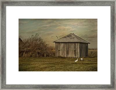 Sunset Farm Framed Print by Mary Timman