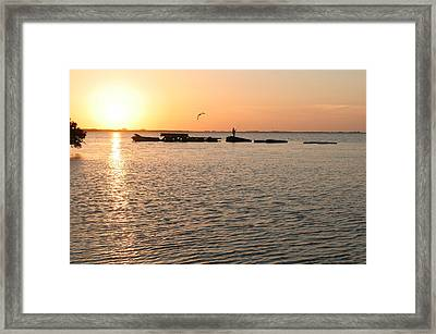 Sunset Fish Framed Print