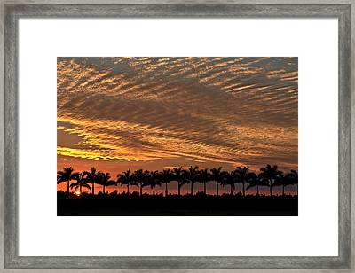 Sunset Florida Framed Print