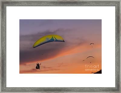 Sunset Gliders Framed Print by Soren Egeberg