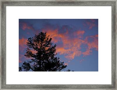 Sunset Glow Framed Print