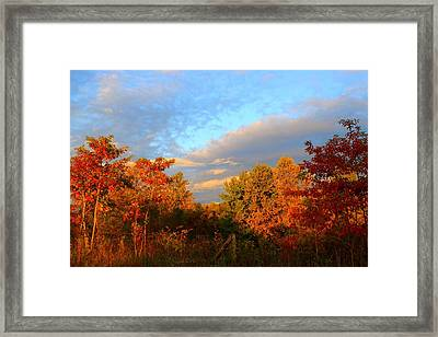 Framed Print featuring the photograph Sunset Glow by Kathryn Meyer