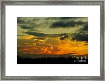 Sunset Glow Framed Print by Lynda Dawson-Youngclaus