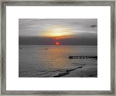 Framed Print featuring the photograph Sunset  by Haleh Mahbod