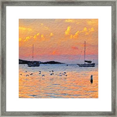 Sunset Harbor With Birds - Square Framed Print