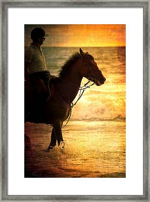Sunset Horse Framed Print by Loriental Photography
