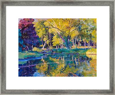 Sunset In Hinsdale Park Framed Print