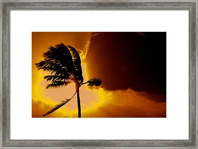Sunset In Long Island Framed Print by Victor Minca