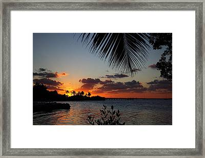 Sunset In Paradise Framed Print by Michelle Wiarda