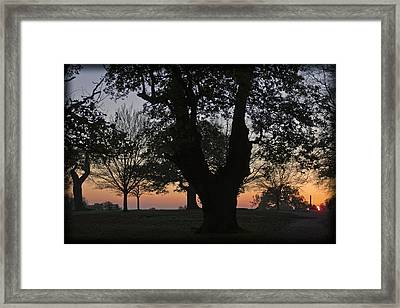 Sunset In Richmond Park Framed Print by Maj Seda