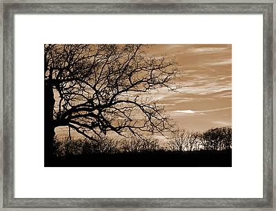 Sunset In Sepia C  Framed Print