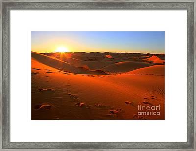 Sunset In The Desert Framed Print by Sophie Vigneault