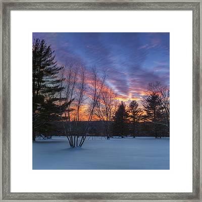 Sunset In The Park Square Framed Print