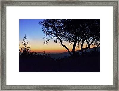 Sunset In Woodside  Framed Print by Alex King