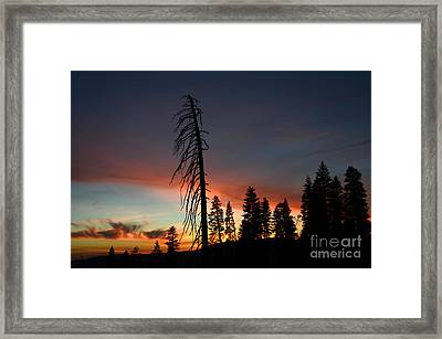 Sunset In Yosemite Framed Print by Debra Thompson