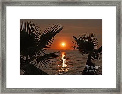 Sunset Framed Print by Jelena Jovanovic