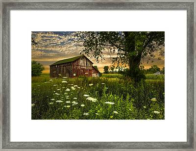 Sunset Lace Framed Print by Debra and Dave Vanderlaan