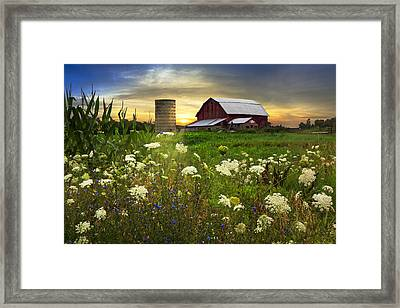 Sunset Lace Pastures Framed Print