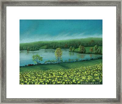 Sunset Lake C Framed Print