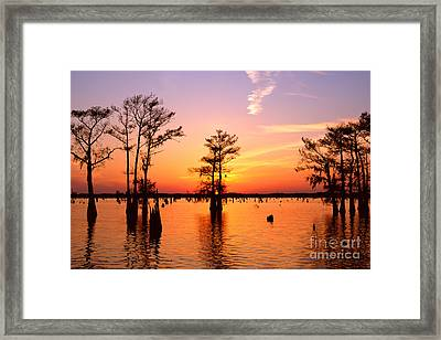 Sunset Lake In Louisiana Framed Print