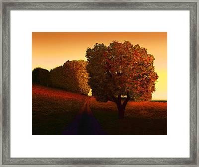 Sunset Lane Framed Print by John Townes