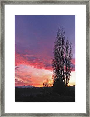 Framed Print featuring the photograph Sunset by Laurie Stewart