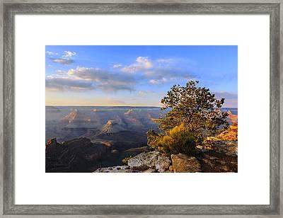 Sunset Light Framed Print by Mike Lang