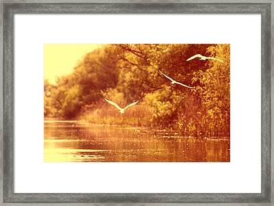 Sunset Lovers Framed Print by Vessela Banzourkova