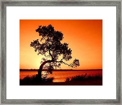 Sunset Framed Print by Mickey Harkins