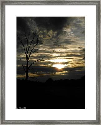 Sunset Of Life Framed Print