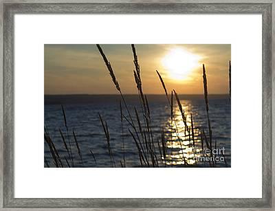 Sunset On Cayuga Lake Framed Print